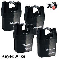 Master Lock Pro Series Padlock - (4) High Security Locks Keyed Alike 6321NKA-4