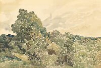 20th Century Watercolour - Landscape with Trees