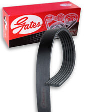 Gates Serpentine Belt - 1996-1999 Ford Mustang 4.6L V8 - Accessory Drive if