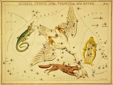 PAINTINGS DRAWING STAR MAP SWAN FOX LYRE CONSTELLATION ART POSTER PRINT LV3141