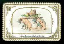 Embossed Coated Stock Christmas Ny Cd Pigs Serving Boar - Goodall c1870