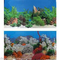 "24""/60cm Aquarium Marine Coral/Freshwater Planted Fish Tank Background #L"