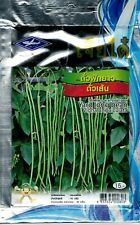 Yard Long Bean Vigna Unguicula Organic Vegetable Seeds  85 Seeds