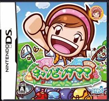 Used Nintendo DS Camping Mama + Papa Japan Import (Free Shipping)