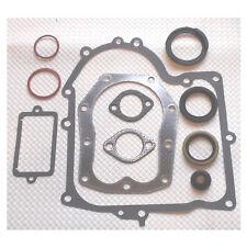 Motor Dichtsatz passend für Briggs&Stratton 494525 494241 Modell 28M707  28D707