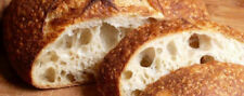 S0URDOUGH STARTER yeast bread flour mix mixer San Francisco BEAST+ REClPES @B
