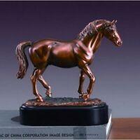 Treasure of Nature 9x8.5 Inches Lipizzaner Stallion