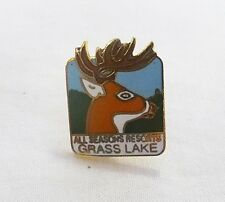 Vintage all seasons resorts grass lake Michigan pin souvenir