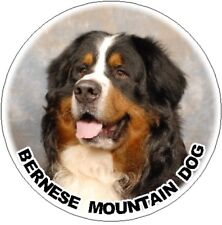 2 Bernese Mountain Dog Car Stickers Starprint Design  - Auto combined postage