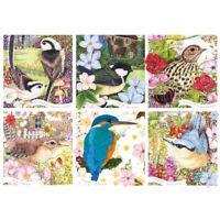 1000 piece RSPB Jigsaw Puzzle | GARDEN BIRDS | Wildlife Jigsaw Brand New