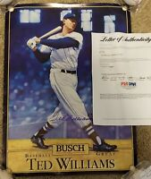 Ted Williams Signed Boston Red Sox 16x20 Busch Beer Premium Poster PSA/DNA LOA