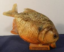 Real 10 Inch Venezuela Taxidermy Piranah Fish