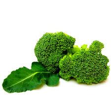 Survival Heirloom Vegetable Broccoil Seeds garden NON GMO Organic Easy to Plant