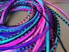 Hair Feathers, 10 Hair Extensions saddle long Pink, Turquoise, Purple real B1