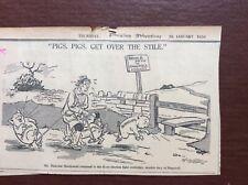 B9f Ephemera 1936 Original Cartoon Middleton Pigs Get Over The Stile