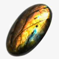 Cts. 41.20 Natural Multi Color Labradorite Cabochon Oval Cab Loose Gemstones