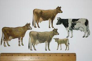 5 ANTIQUE DE LAVAL CREAM SEPARATOR COW TIN ADVERTISING SIGN Premium DAIRY