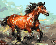 "16x20"" Horse DIY Paint By Number Kit Acrylic Oil Painting on Canvas 1008"