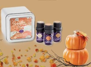 Scentsy PERFECTLY PUMPKIN Oil 3-Pack Essential Oil Tin orange Spice -caramel ZZ