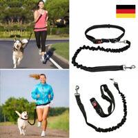Hundeleine Laufen Stretch Haustier Leine Hüftgurt mit Schnalle Versicherung