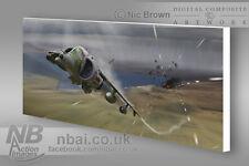 BAe Harrier GR3, Falklands War, Digital Artwork on canvas.
