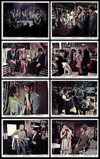 BULL TERRIER/BAR SINISTER orig 1955 movie color lobby photos  IT'S A DOG'S LIFE
