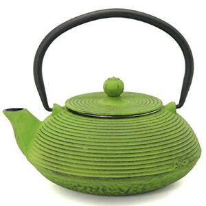Nambu Tetu Ironware Cast Iron Tea Pot Green Made in From Japan