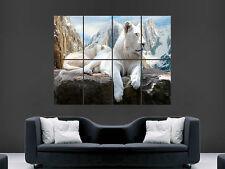Arte Leones blanco enorme pared poster gigante de las montañas