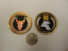 CHALLENGE COIN 2-135 INFANTRY BN 112 MILITARY POLICE 1-80 CAVALRY NEW DAWN OPS