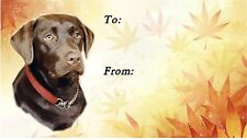 Labrador Retriever (Chocolate) Dog Self Adhesive Gift Labels by Starprint