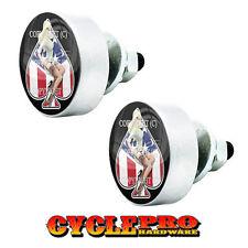 2 Silver Aluminum Lg License Plate Frame Tag Bolts Pin Up Girl Spade - 128