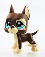 Rare Brown Great Dane Dog Puppy Blue Dot Eyes Hasbro Littlest Pet Shop LPS #15
