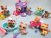 Littlest Pet Shop Lot 5 Random Pcs 2 Kitten Cats and 3 Accessories Surprise Gift