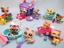 Littlest Pet Shop Lot 5 Random Pcs 2 Kitten Cats 3 Accessories BUY 3 GET 1 FREE