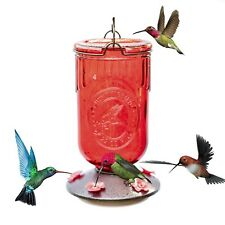 Hummingbird Feeder Dark Red Glass Antique Bottle Nectar Bird Wildlife Outdoor