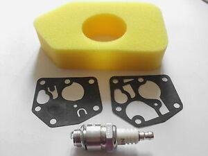 Hayter Hawk Mower Tune up Kit Diaphragm, Air Filter, Spark Plug, Briggs/Stratton