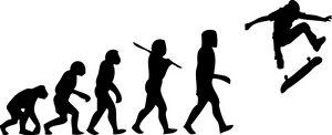 Evolution of man skateboardStickers skate graphic  Vinyl Decal Car Wall Massive