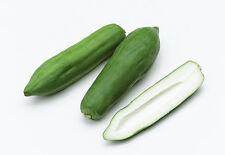 Fresh thai papaye (vert/vert) (800g) - uk vendeur