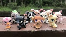 Littlest Pet Shop Lot Of 12 LPS Cats Dogs More Persian Siamese Toys