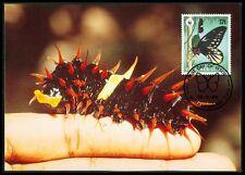 PAPUA NEW GUINEA MK SCHMETTERLINGE BUTTERFLY BUTTERFLIES MAXIMUM CARD MC CM bh04