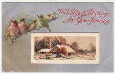 WILDT & KRAY #849 - Birds & Cottage - 1910 used postcard