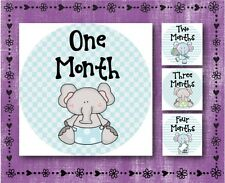 "Baby Elephant - BLUE - Baby Month 1-12 - Milestone Stickers - 2.5"" Round Glossy"