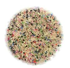 50 gms Multi Coloured Tiny Glass Seed Beads