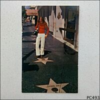 The Walk Of Fame Hollywood California Joanne Dru 1973 Postcard (P493)