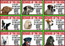 Beware Of The Dog Sign Gate in 3 Seconds Various Breeds Set C