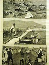 Algeria Medical Engraving CRICKET PLAGUE EGGS ARABS 1889 Arabian Print Matted