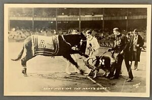 ARMY MULE & NAVY GOAT - Real Photo Postcard - FOOTBALL GAME RIVALS