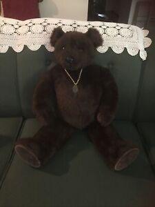 Little Filks  Tiverton, Devon Bear