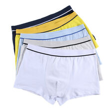 Cotton Boys Underwear Shorts Panties Boxers Briefs For Kids Children Teenagers