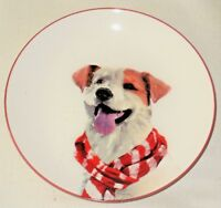 """NEW~Darling 7"""" Porcelain Plate Happy Dog (Terrier) in a Scarf~Display or Use"""